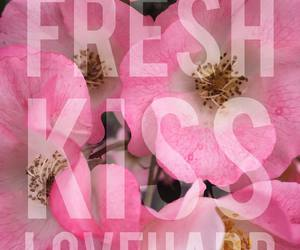 flowers, typography, and pink image