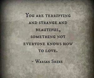 love, quotes, and beautiful image