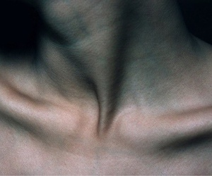 clavicle, skin, and veins image