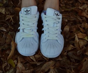 adidas, autumn, and shoes image