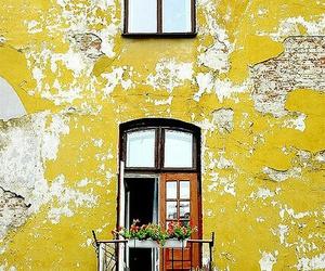 doors, tumblr, and windows image