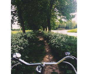 bicycle, flowers, and green image