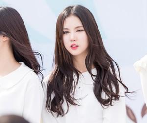 eunha, 정은비, and 은하 image