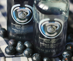 blueberry, body care, and the body shop image