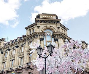 architecture, blooms, and moscow image