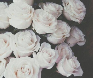 beautiful, flowers, and favorite image