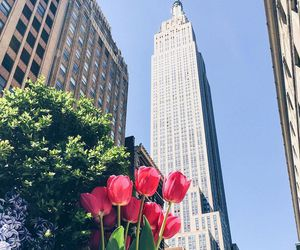 new york and flowers image