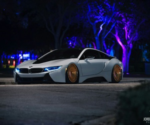 blue, bmw, and ghost image