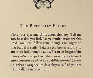quotes, butterfly, and Lang Leav image