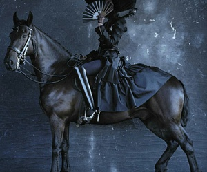 horse, photography, and tim walker image