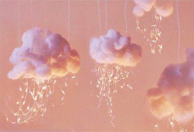 nuages and rose image