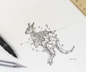 kangaroo, art, and drawing image