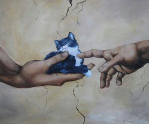 cat, god, and hands image
