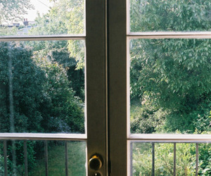 nature, window, and green image