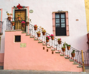 pink, flowers, and house image