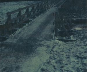 day, expired, and winter image