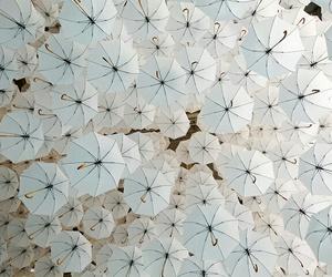 umbrella and white image