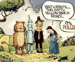 funny, pollen, and spring image