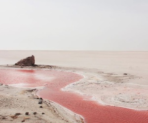 pink, beach, and travel image