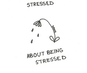stressed, flowers, and quotes image