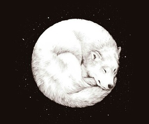 artic, moon, and wolf image