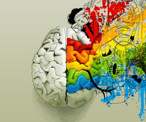 brain, art, and high image
