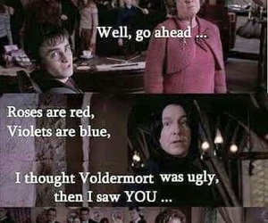 funny, lol, and voldemort image