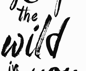 quotes, wild, and black and white image