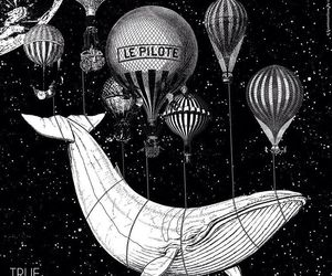 balloon and whale image