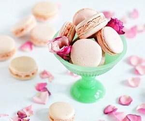 food, rose, and macaroons image