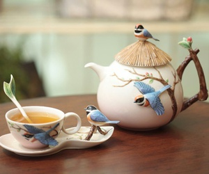 beautiful, birds, and cup image