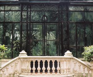 green, garden, and interior image