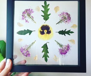 etsy, glasshouse, and pressed leaves image