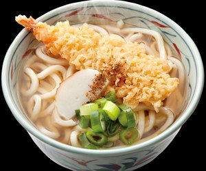 food and udon image