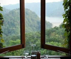 window, nature, and coffee image