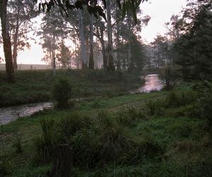 2014 and tarago river image