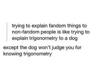 fandom, funny, and dog image