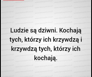 polish and quotes image