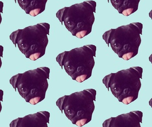 pattern, pug, and lockscreen image
