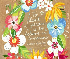 quote, flowers, and life image