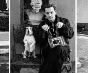 johnny depp and black image