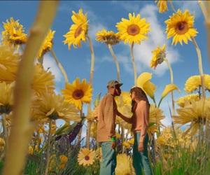 yellow, tyler the creator, and sunflower image