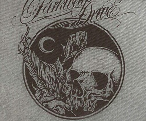 parkway drive and skull image
