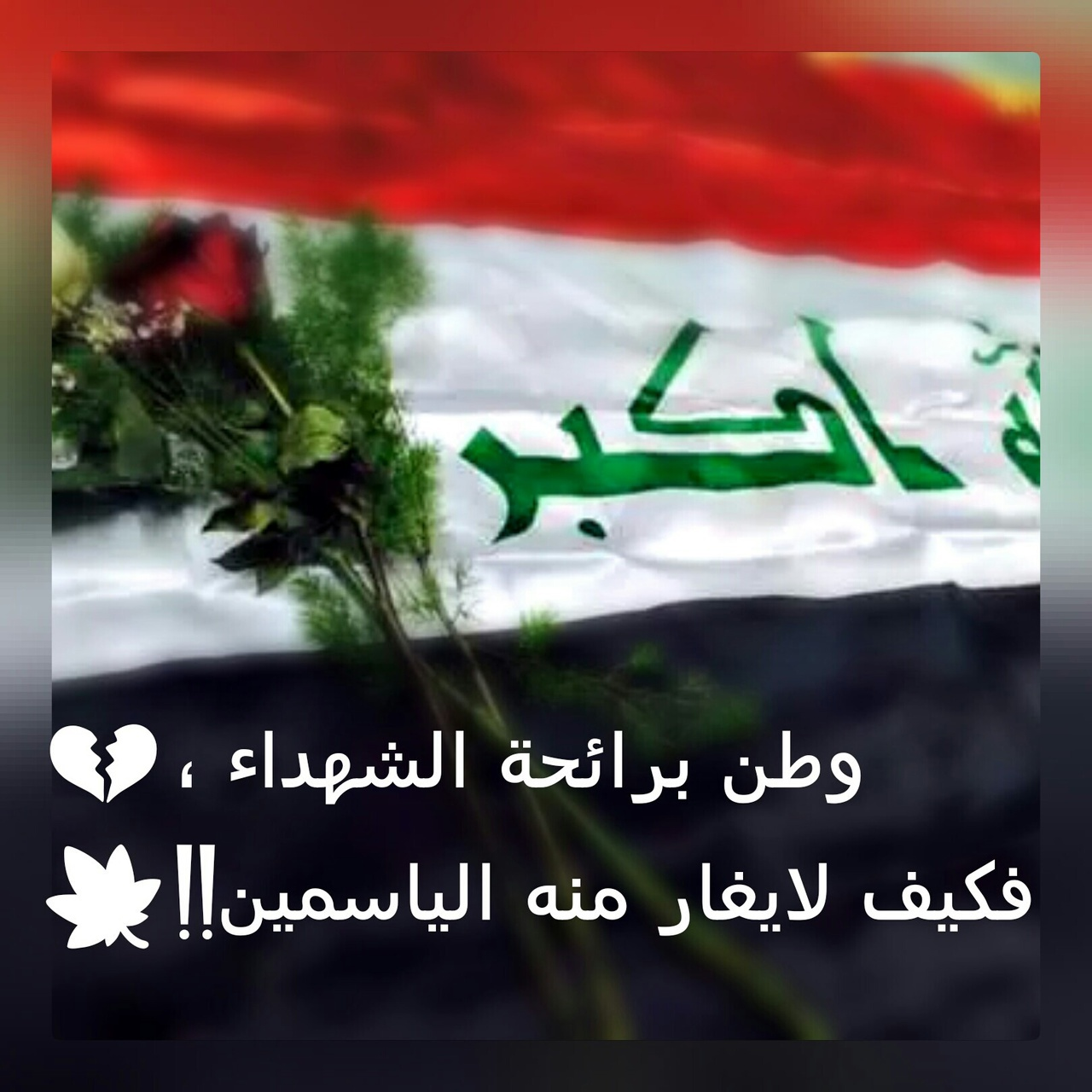 84 Images About عراق الحب On We Heart It See More About
