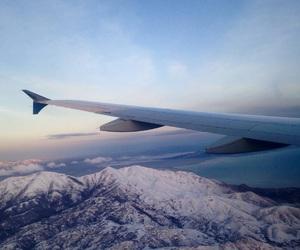 beautiful, family, and flight image