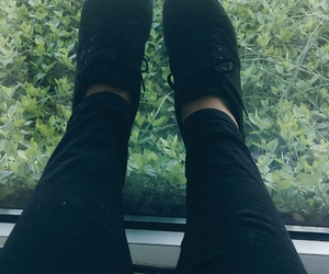 bands, plants, and tumblr image