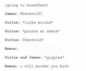 friendship, funny, and harry potter image