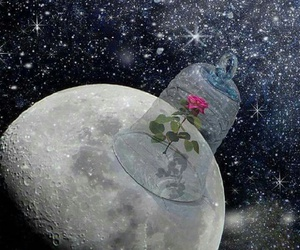flower, moon, and space image