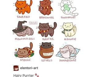cats, harry potter, and funny image