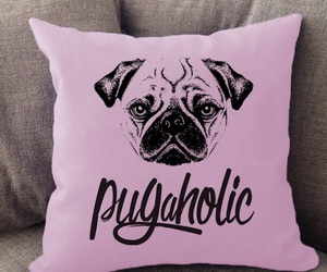 animals, cushions, and dogs image